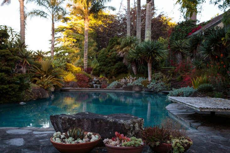 Ayrlies-New-Zealand-12-Gardenista