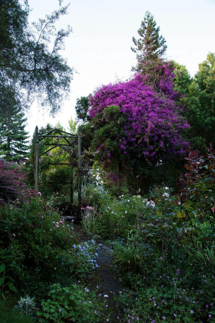 Ayrlies-New-Zealand-8-Gardenista