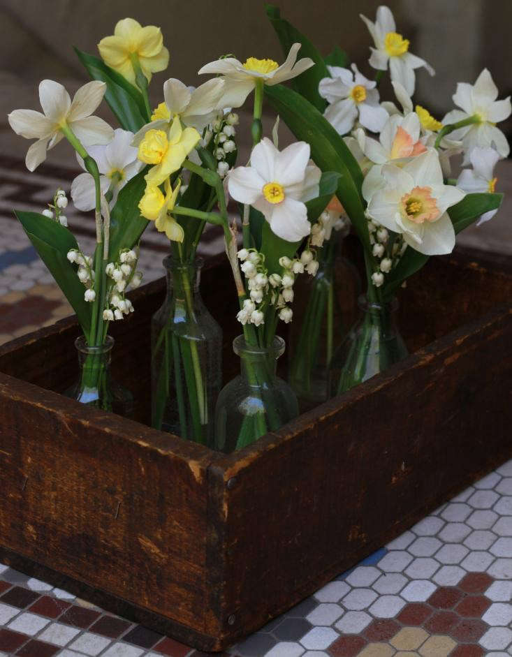 DIY-narcissus-lily-of-the-valley-posies-bouquets-arrangements-gardenista