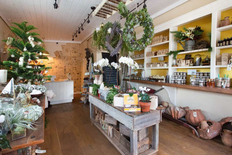 Garden-Apothecary-shop-half-moon-bay-gardenista-082