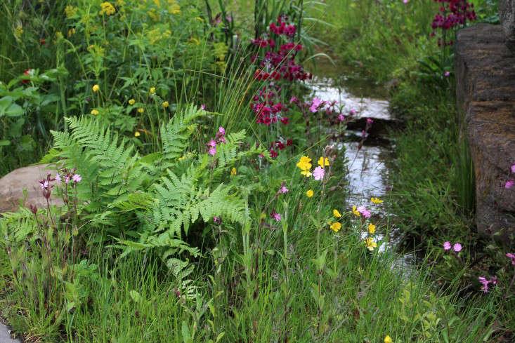 Gardenista-GROW-London-Pearson-stream-by-Kendra-Wilson