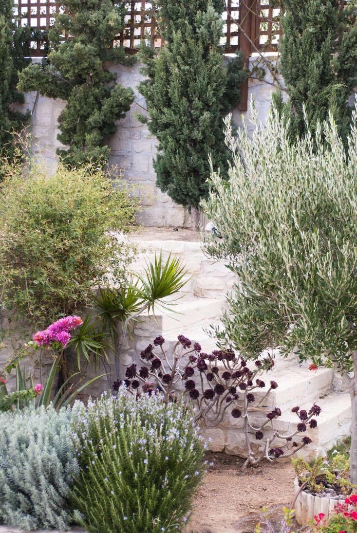 Greek-garden-Crete-Eleni-Psyllaki-21-gardenista