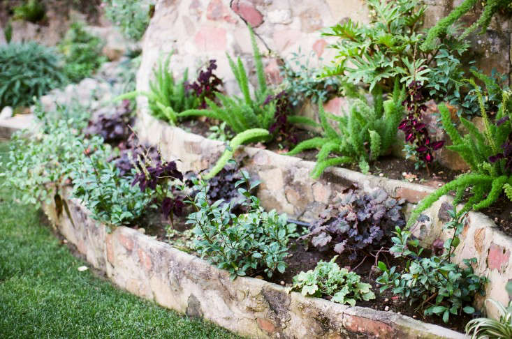 Kathleen-Whitaker-Echo-Park-Garden-Stepped-Planting-Wall-Gardenista-01