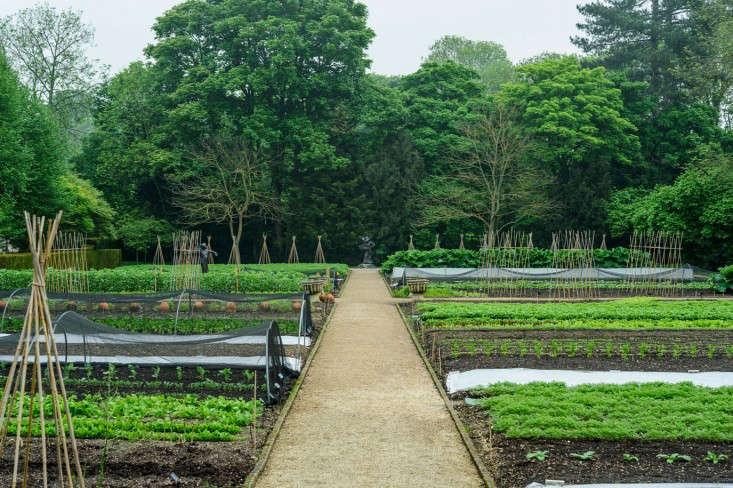 Kitchen-Garden-Experts-photo-Jason-Ingram-Manoir-gardenista