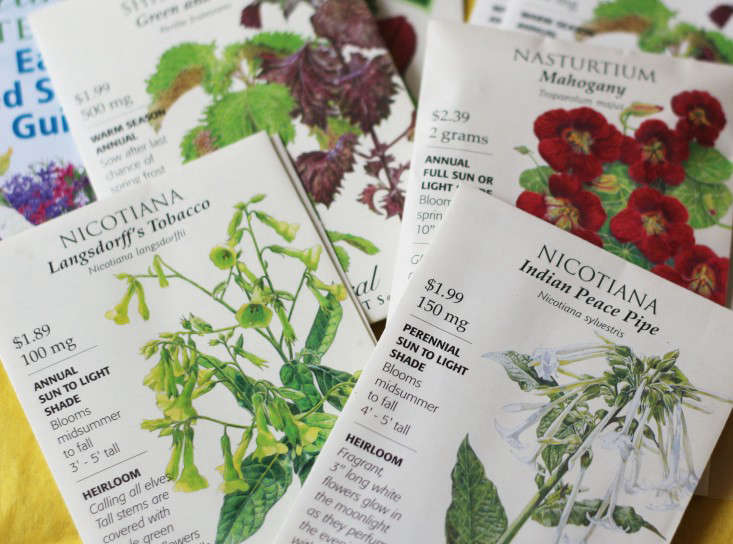 flower-seed-packets-envelopes-marie-viljoen-gardenista