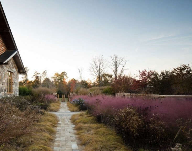 Landscape architect firm Nelson Byrd Woltz designed