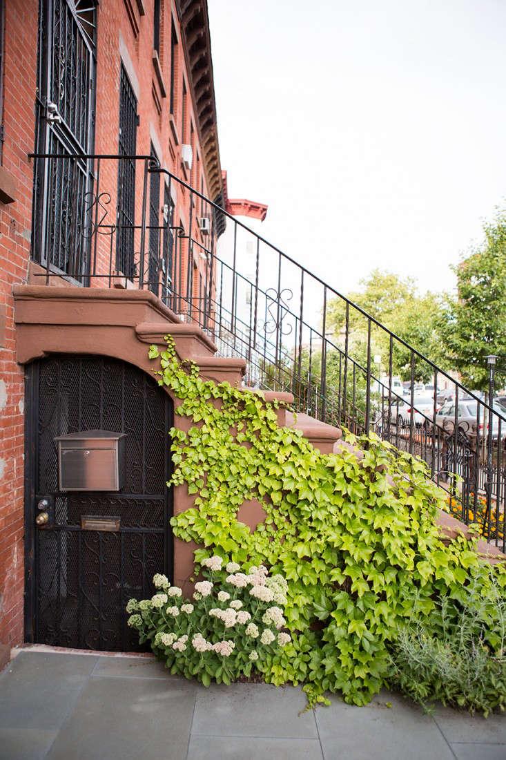 Garden Designer Visit A Low Maintenance Brooklyn Backyard By New Eco Landscapes Gardenista