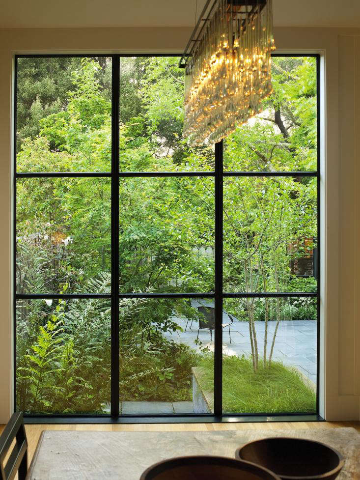From the dining room, the clients look out onto a woodland. A giant chain fern (Woodwardia fimbriata) was placed close to the window to emphasize the feeling of being enveloped by shady woods.