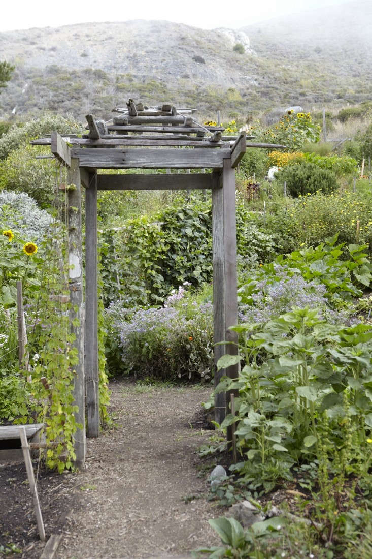 Organic gardening in Marin County, California. For more, see Slide Ranch, at the Edge of the World. Photograph by Katie Newburn.