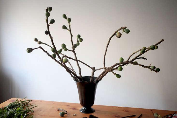 Sophia_Moreno_Bunge_Gardenista_Arrangement_Fig_Base
