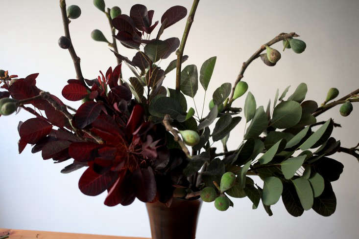 Sophia_Moreno_Bunge_Gardenista_Arrangement_Smokebushclose