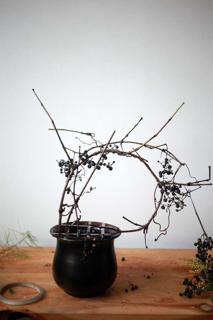 Sophia_Moreno_Bunge_Gardenista_Floral_Arrangement_DIY_Wild_Grape_step1
