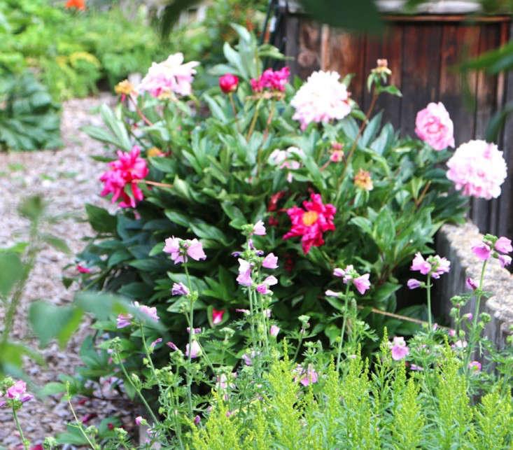 Swiss-Cottage-Edible-Garden-Gardenista-3-hero