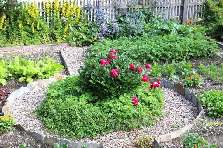 Swiss-Cottage-Edible-Garden-Gardenista-5