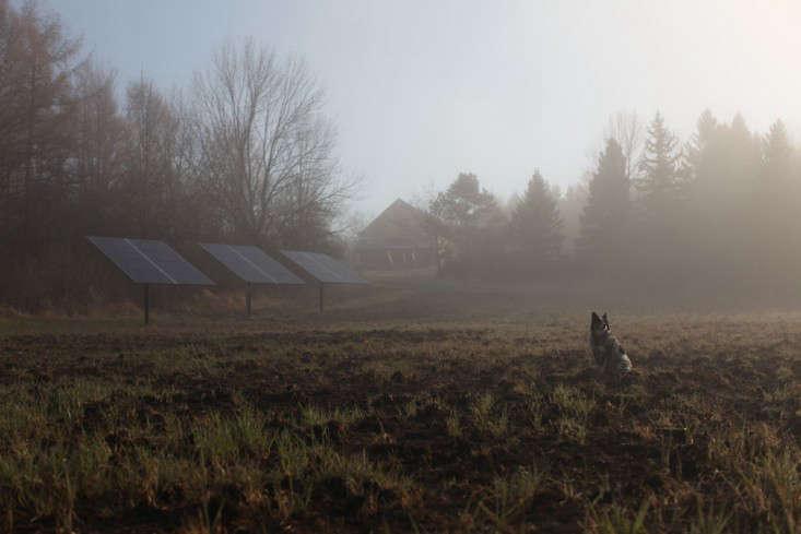 Worlds End Farm Sarah Ryhanen florist Saipua solar panels
