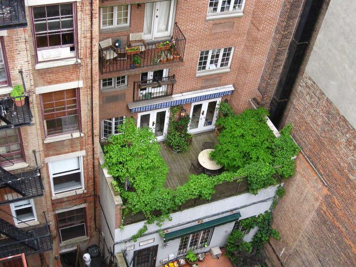 apartment-garden-ideas-to-steal-green-roof-marie-viljoen-gardenista
