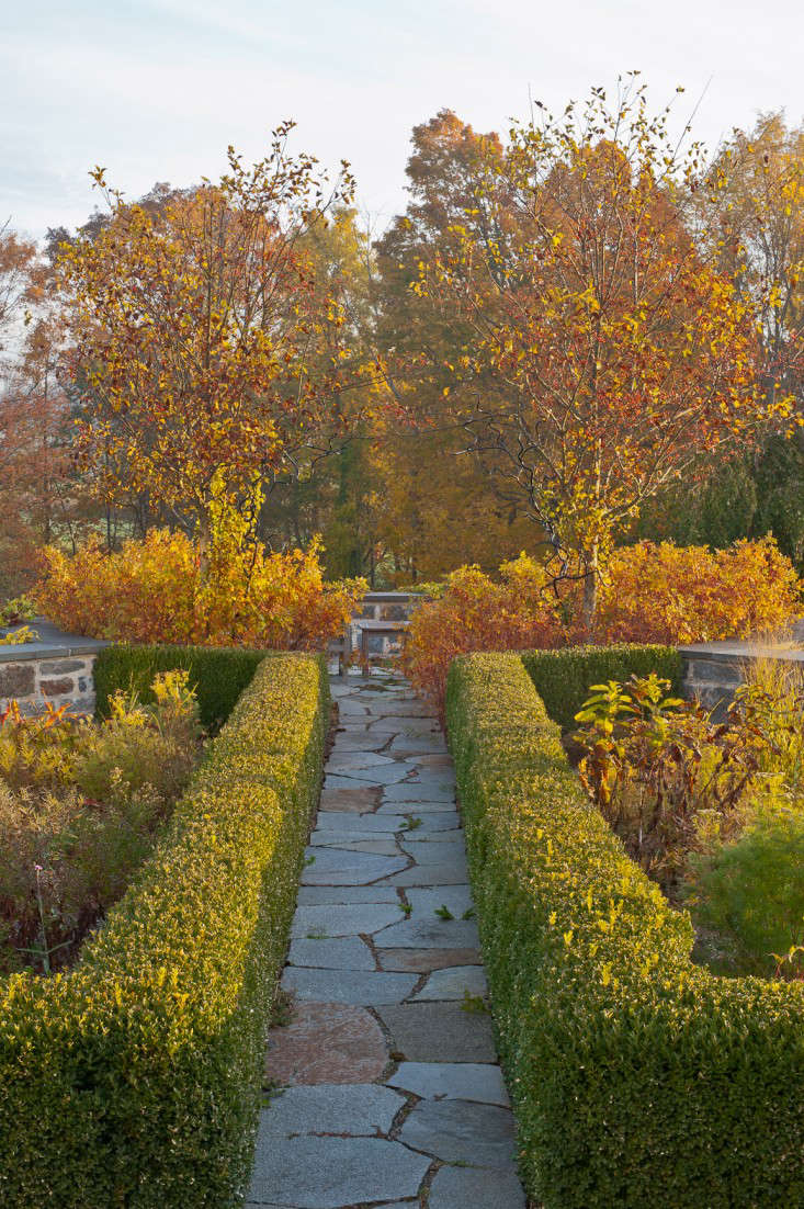 autumn-fall-colorful-garden-karen-bussolini-gardenista-3