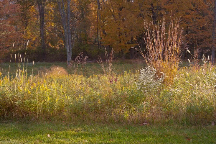 Looking towards autumn. Photograph fromAutumn Colors: A Fiery Fall Palette by Landscape Designer Larry Weaner.