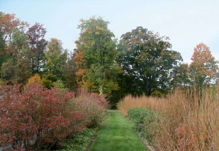 autumn-fall-garden-meadow-grass-path-larry-weaner-gardenista