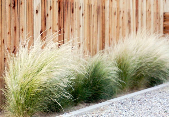 before-and-after-front-yard-landscaping-brick-house-gardenista-8-