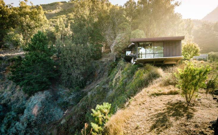 big-sur-cliffside-garden-fougeron-view-drought-tolerant-plantings-gardenista-1