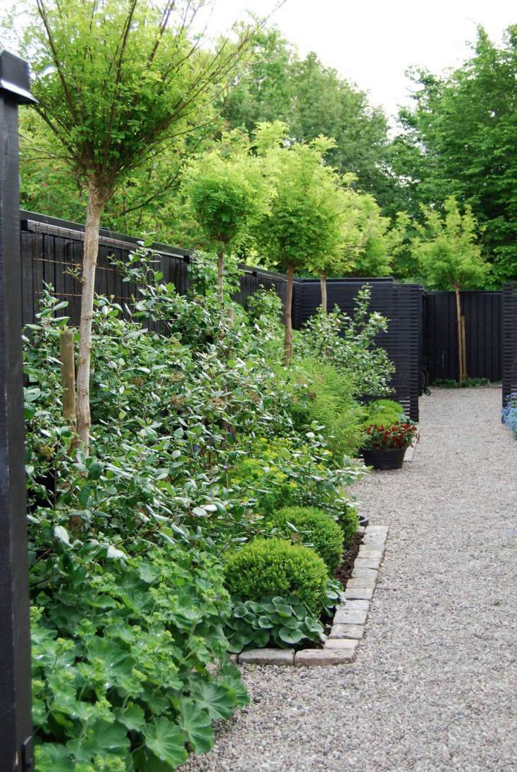 black-fence-almbacken