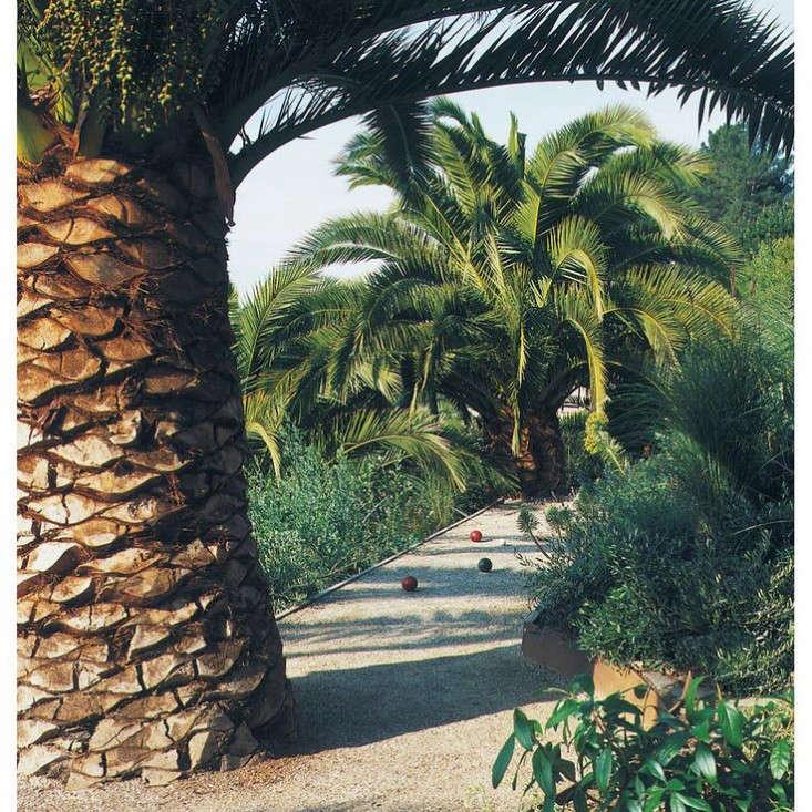 bocce-court-palm-tree-scott-lewis-gardenista