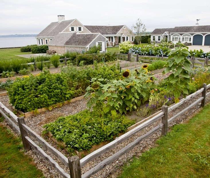 brewster-garden-edible-kitchen-vegetables-gardenista