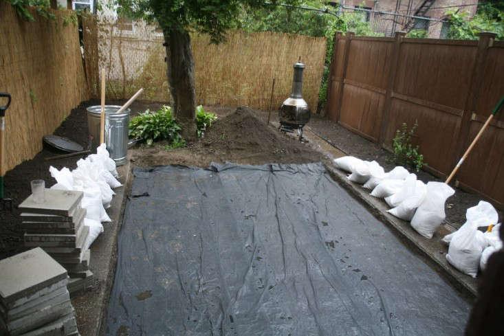 brooklyn-garden-crown-heights-backyard-bef-re-3-gardenista