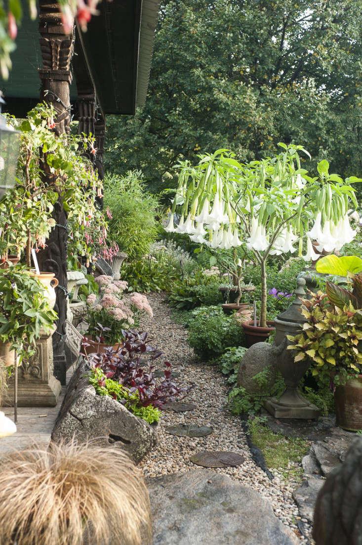 campo-de-fiori-14-rich-pomerantz-gardenista