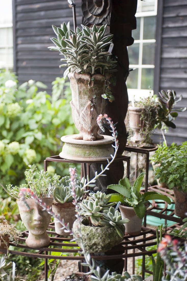 campo-de-fiori-19-rich-pomerantz-gardenista