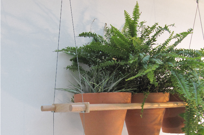 compagnie-hanging-house-plant-shelves-gardenista