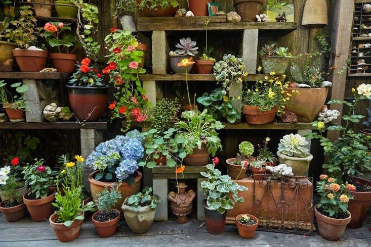 concrete-block-garden-shelves;gardenista