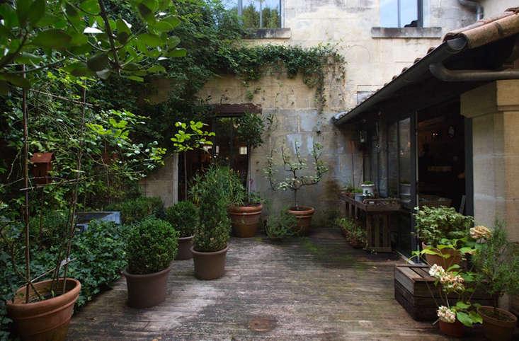 Photograph by Mimi Giboin for Gardenista.