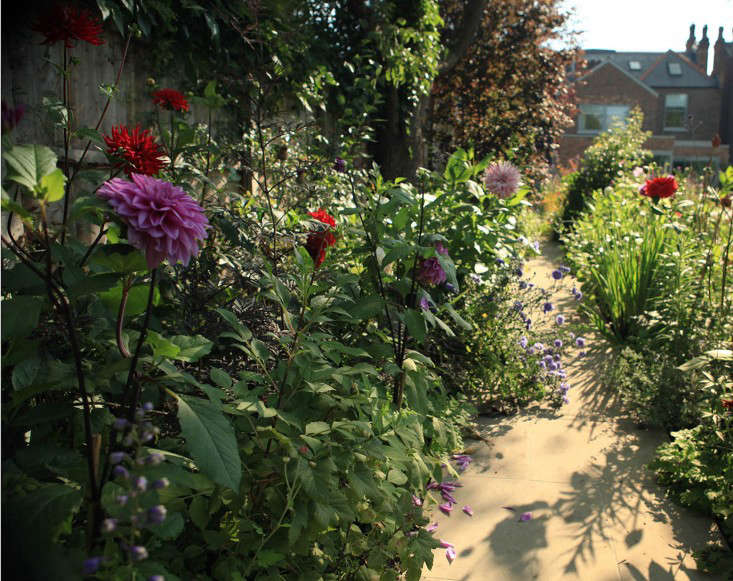 Sam gave his London garden an overhaul this year with the help of landscape designer Jo Thompson. The more he plants, the more he wants. Recently, Sam&#8