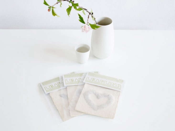 diy-heart-shape-microgreens-sprouts-leafling-grow-paper-gardenista