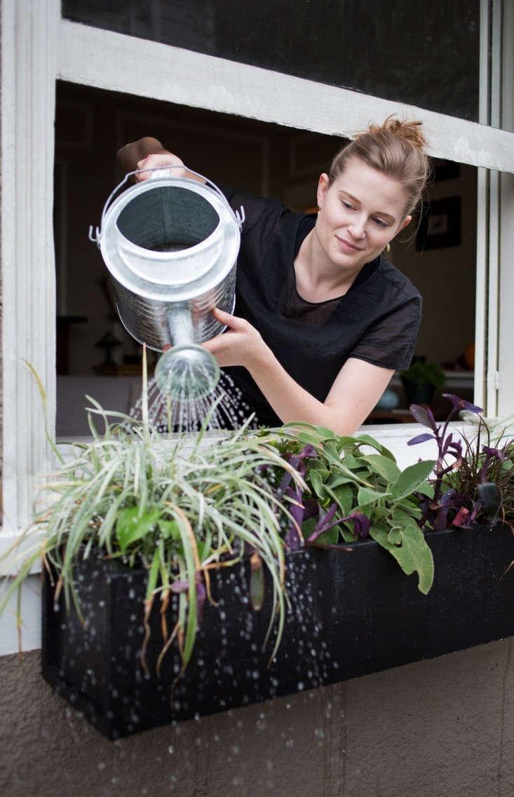 diy-window-b-xes-gardenista