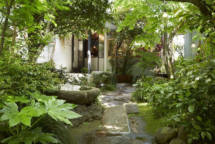 Photograph by Aya Brackett. For more of this garden, see The Little Shop of Flowers in Tokyo.