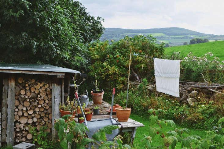 erica-vanhorn-garden-ireland-rincy-koshy-gardenista-4