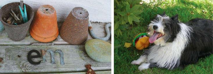 erica-vanhorn-garden-ireland-rincy-koshy-gardenista-7a