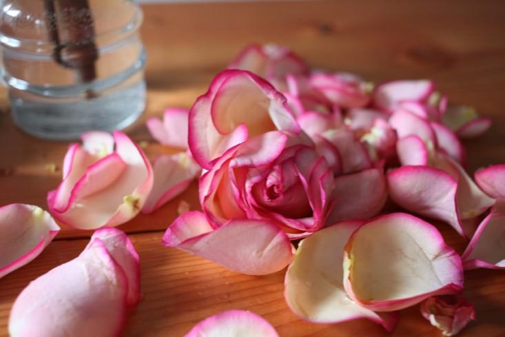 flower-water-health-7-sophia-moreno-bunge-gardenista