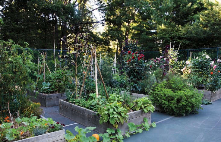 A major advantage of square foot gardening is that you don&#8