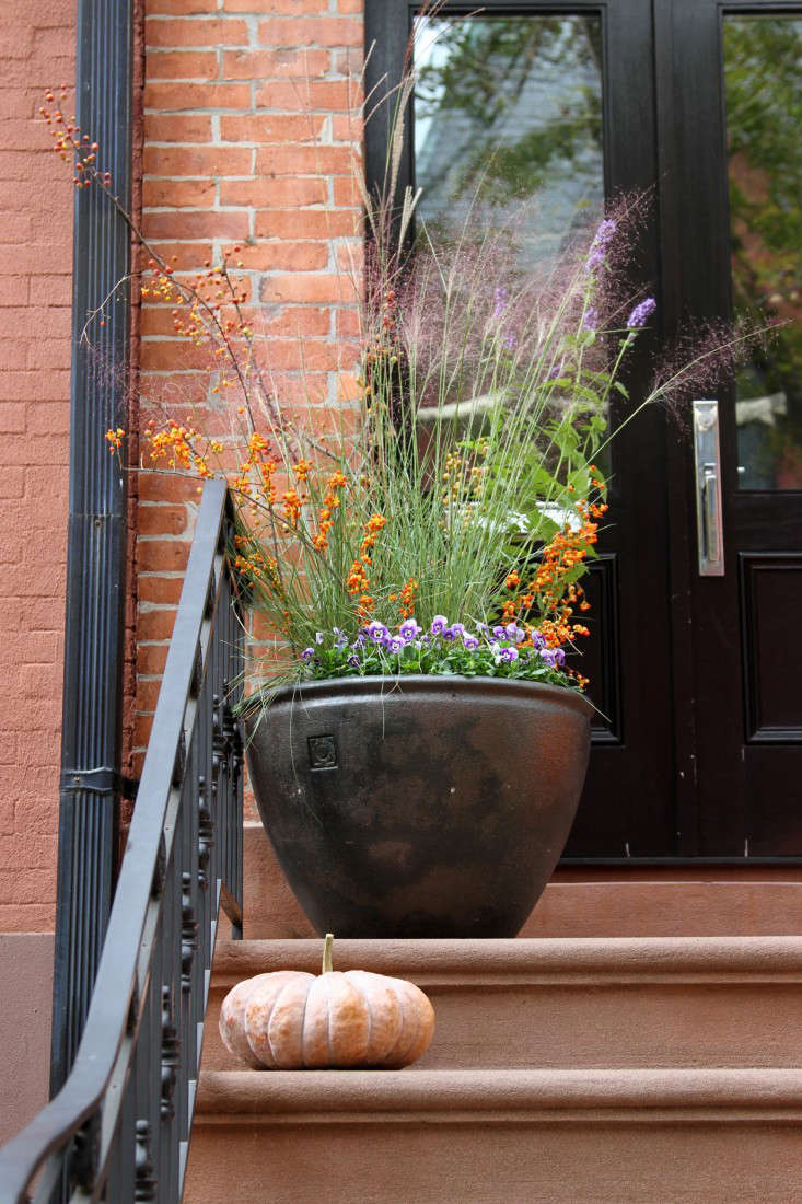 A classic Brooklyn brownstone stoop. Photograph by Erin Boyle.