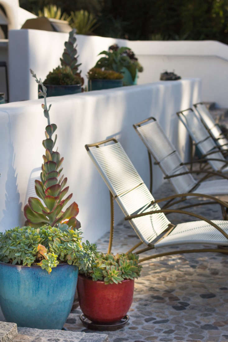 In all, there are 80 planters, most with succulents. &#8
