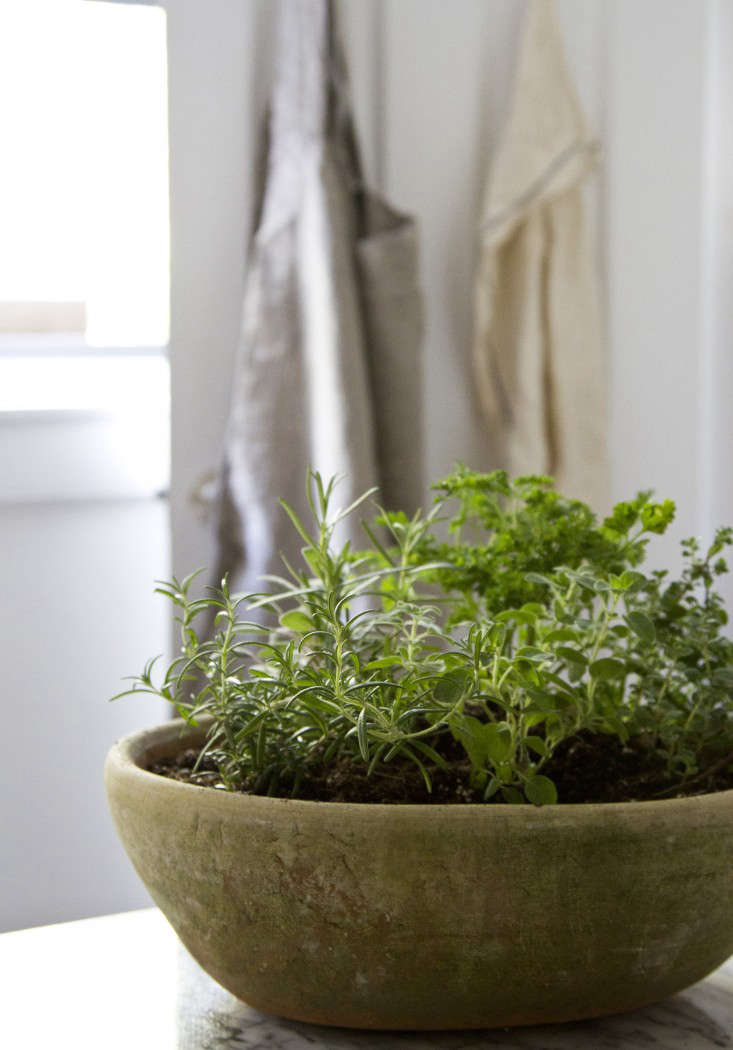 All you need is one pot, five herbs, a bit of soil, plenty of sunshine and–presto–you have an herb garden.
