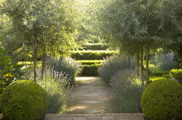 Photograph courtesy of Peter Fudge. For more, see Garden Designer Visit: Lavender Fields in Australia.