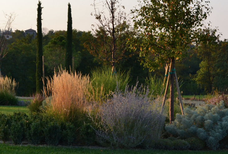 italy-cristiana-ruspa-garden-grasses-artemesia-lawn-gardenista