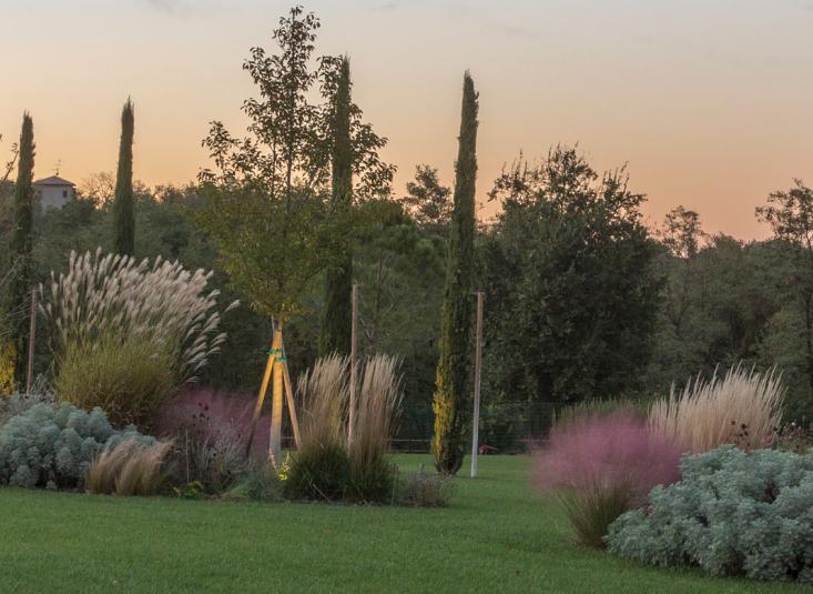 italy-cristiana-ruspa-garden-perennials-planting-scheme-lawn-gardenista