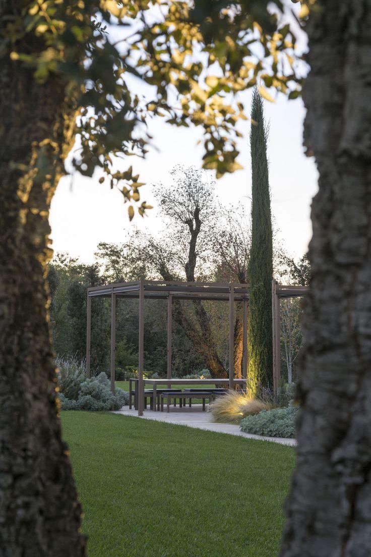 italy-cypress-pergola-garden-gardenista