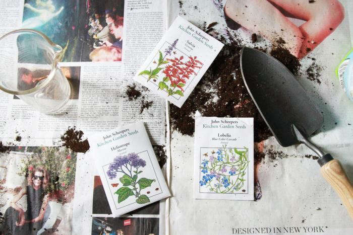 Connecticut-based John Scheepers Kitchen Garden Seeds sells a wide selection of heirloom vegetable and culinary herb seeds. Photograph by Erin Boyle.